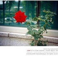 Gwak Jae ran | Social Profile