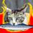 cat2151