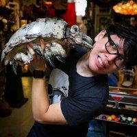 Norman Chan | Social Profile