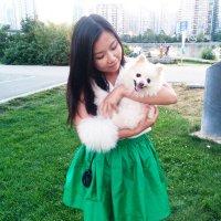 Shelley Chen | Social Profile
