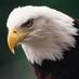 111 Çavuşbaşılı's Twitter Profile Picture