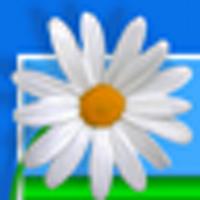 Patty Newbold | Social Profile