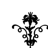 feb19: unframe11/4-6 | Social Profile