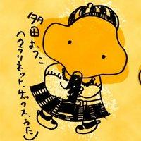 tadayoko | Social Profile