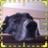 Lou_ell_ah profile