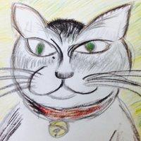 kazutaka nanchi | Social Profile