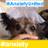 Timmy_Dog profile