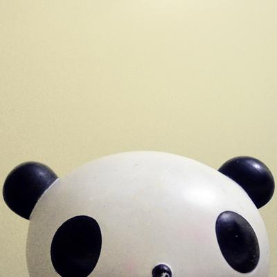 Panda | Social Profile