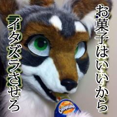 座敷狼(ざしき) Social Profile