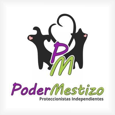 PoderMestizo1   Social Profile