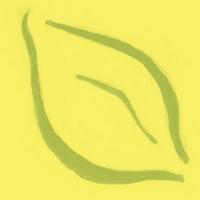 Sunflower Naturals | Social Profile