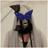 maskedKT