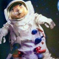 SpaceSquirrel | Social Profile