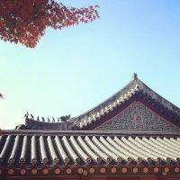 JEONG SEON | Social Profile