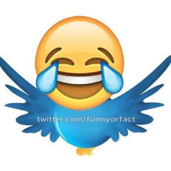Funny Or Fact Social Profile