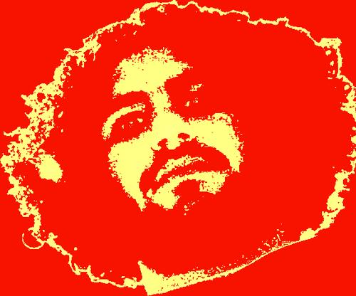 Alaa Abd El Fattah Social Profile