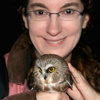 Lynn Cherny | Social Profile