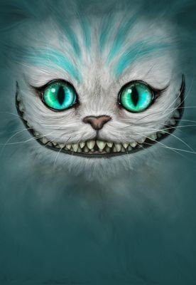 Kewl Fred Cat【ツ】KFC Social Profile
