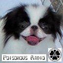 デムパ(Poisonous_Radio_GaGa)