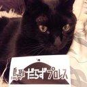吉田材木店 (@01yoshida) Twitter