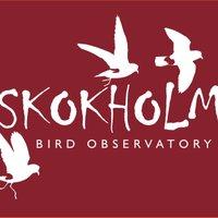 Skokholm Island | Social Profile
