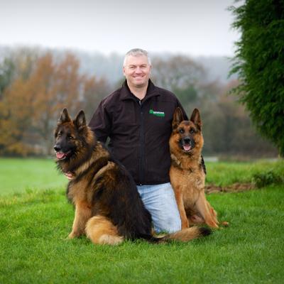 Havers Dog Behaviour   Social Profile
