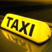 Taxioenemasneek