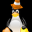 Linux SCSI