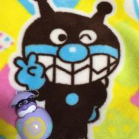 きぃしゃー、きしゅー、NDS | Social Profile
