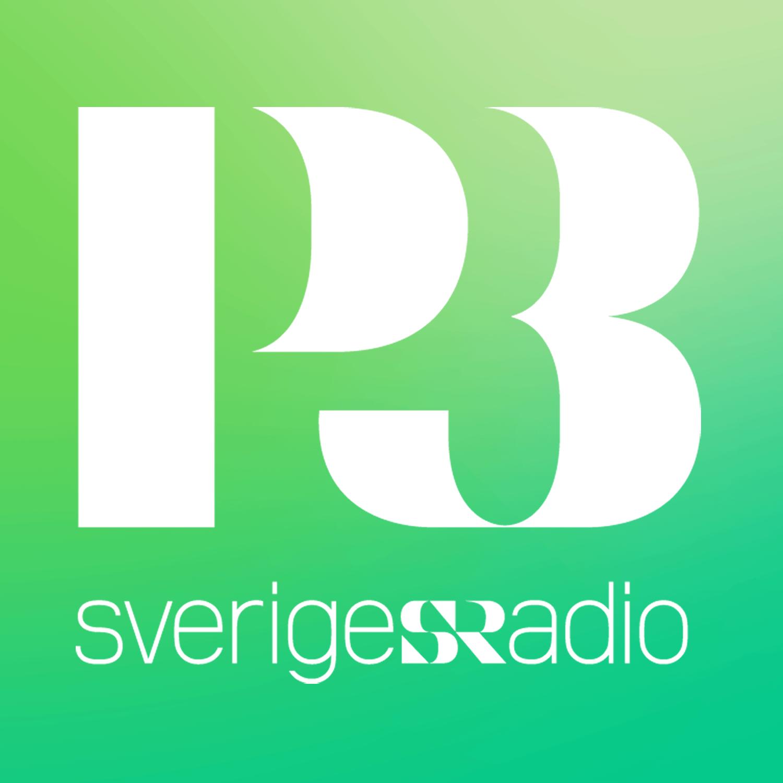 P3 Nyheter Social Profile