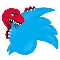 Raptors Swim Club | Social Profile