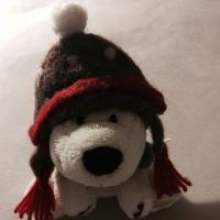 @Lisa_polar_bear