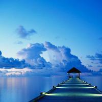 Seçkin Deniz | Social Profile