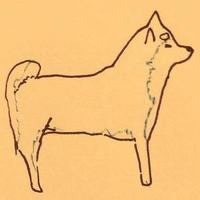 柏木わん | Social Profile