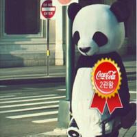 거리위에 팬더   Social Profile