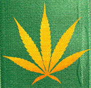 Toke of the Town Social Profile