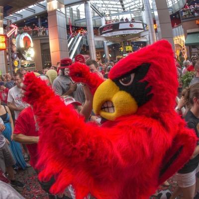 Louie the Cardinal | Social Profile