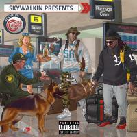 SKYWALKIN | Social Profile