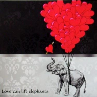 Help an Elephant Social Profile