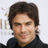 SomerhalderNews profile