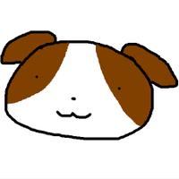 @shippo_shino