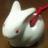 The profile image of hatarakaknight