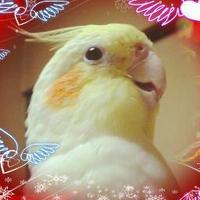 Azu | Social Profile