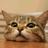 @Job_Hunting_Cat
