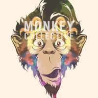 @MonkeyCollect