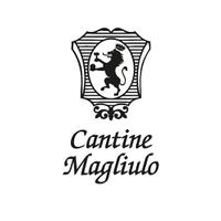 @ViniMagliulo