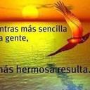 Santiago (@01_terricola) Twitter