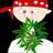 Marijuana_fans profile