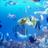 aquarium7919
