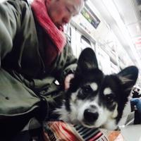 山本隆太 | Social Profile